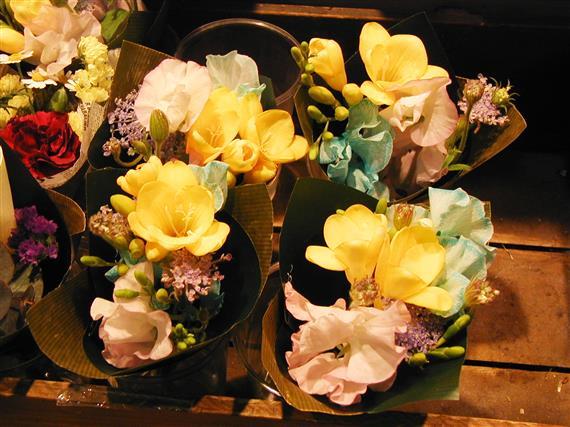 flower_P1010161a.jpg