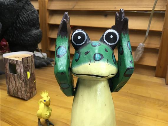 frog_2559a.jpg