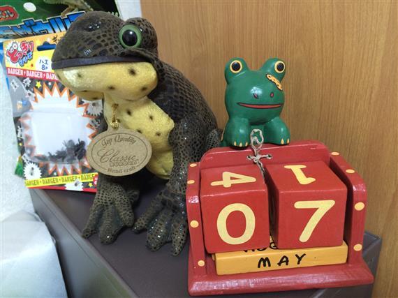 frogs_8639a.jpg