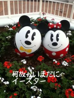 image-20110610104708.png