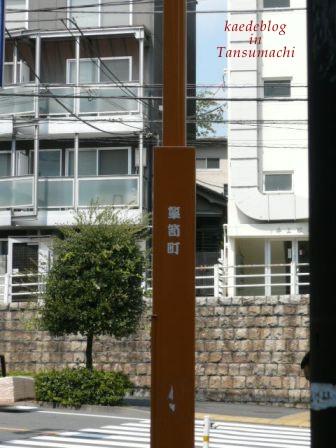 110908-1.JPG