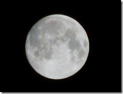 月撮影練習_20130623_007