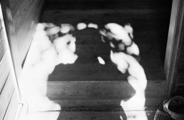 90年7月14日~16日仙丈ヶ岳_0063.jpg