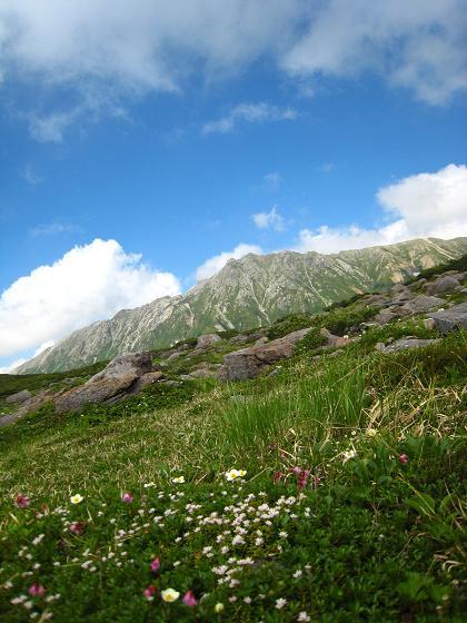 スイス庭園から水晶岳.JPG