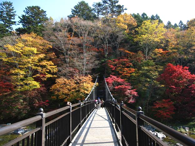 紅の吊り橋.JPG