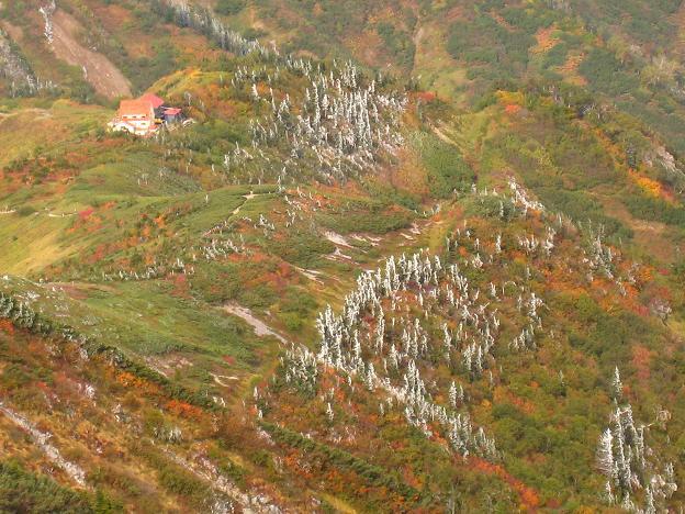 紅葉の中の種池山荘.JPG