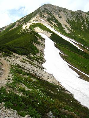 鷲羽の登山道.JPG