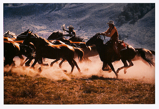 Richard-Prince-Untitled-cowboy-1993.jpg
