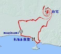 20090204-2.jpg