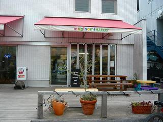 20090204 006.jpg