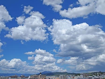 natuzora2012_01.jpg