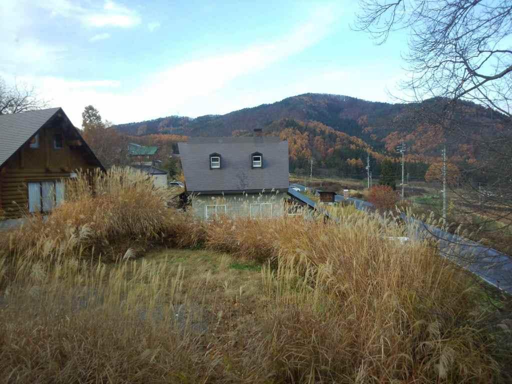 2012-11-24 08.58.17.jpg