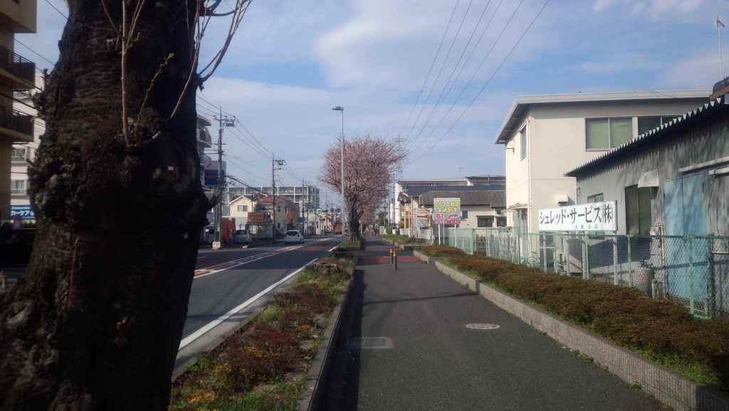 2014-03-29 15.11.49.jpg