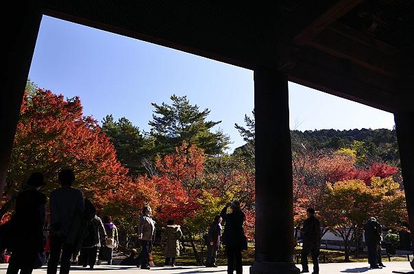 京都紅葉6.jpg
