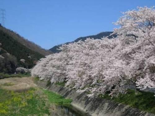 ブログ用貼り付け 英米との永続的な友好は昭和天皇の遺訓である_image011.jpg