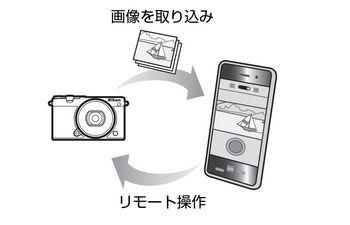 DSC_4360.JPG