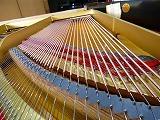 グランドピアノ弦張替4.jpg
