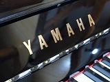 ヤマハU3A(c).jpg