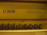 ヤマハu30bl(b).jpg