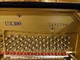 ヤマハux300-sx(b).jpg