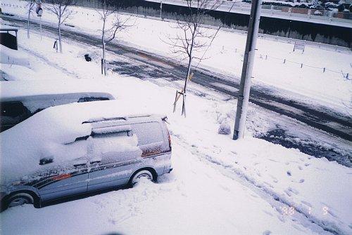19980109_NOAH_2.jpg