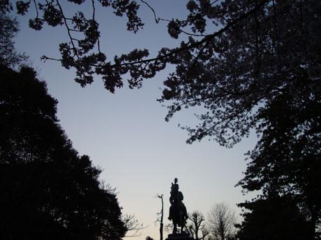 上野公園の桜(4).jpg
