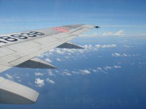 飛行機の翼.jpg