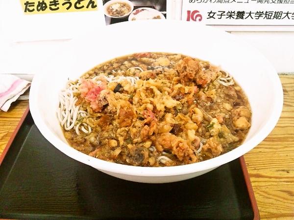 hiyashi-tanuking-x5.jpg