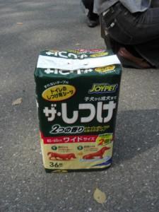 PICT0032.JPG