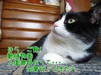 P1160855編集②.jpg