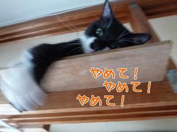 P1170551編集②.jpg