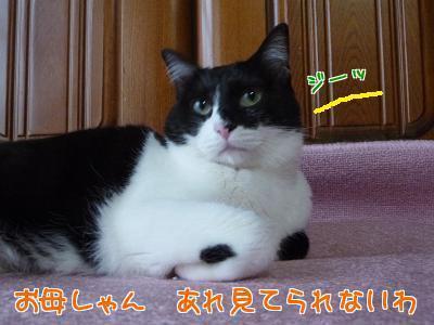 P1180468編集②.jpg
