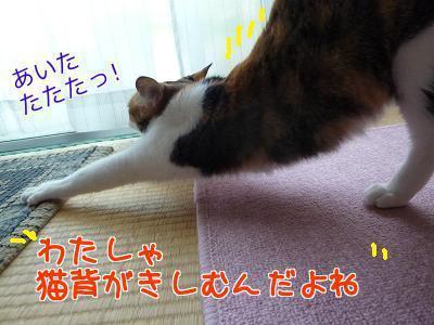 P1200745編集②.jpg