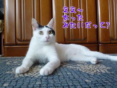 P1220460編集②.jpg