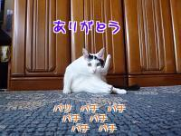 P1220471編集②.jpg