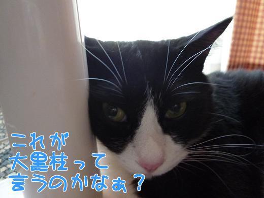 P1240053編集②.jpg