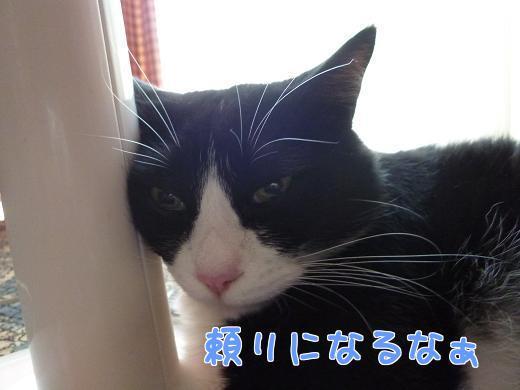 P1240055編集②.jpg