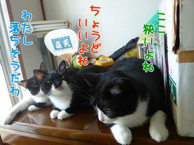 P1240312編集②.jpg