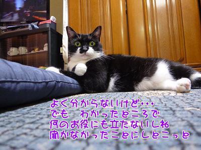 P1250105編集②.jpg