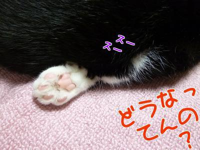P1250964編集②.jpg