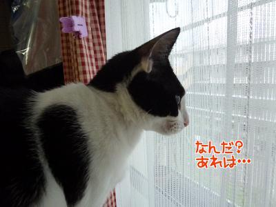 P1280182編集②.jpg