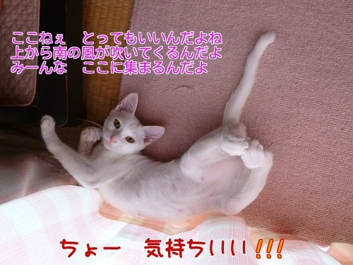 P1360249編集②.jpg