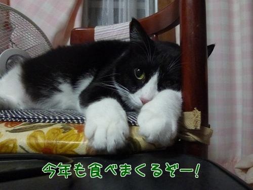 P1370584編集②.jpg