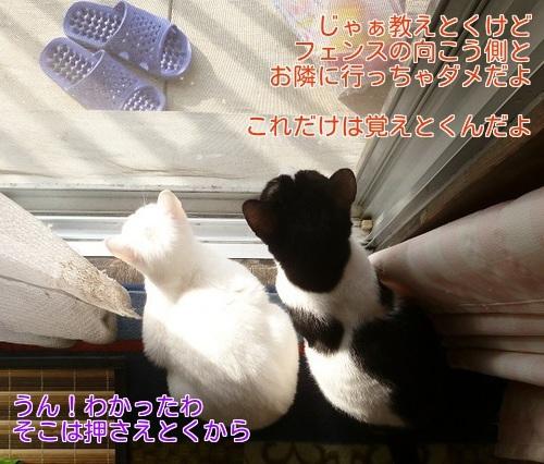 P1400571編集②.jpg