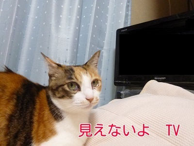 P1450406編集②.jpg