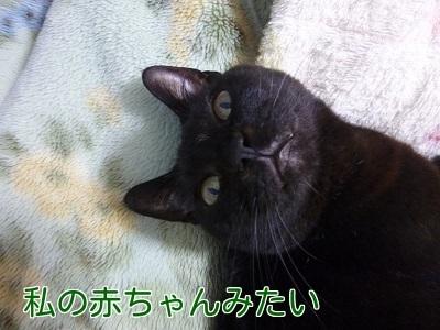 P1460029編集②.jpg