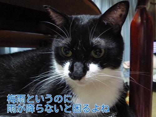 P1460055編集②.jpg