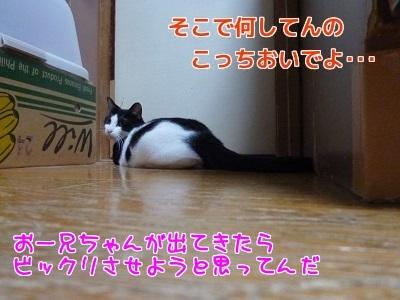 P1470541編集②.jpg