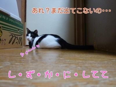 P1470543編集②.jpg