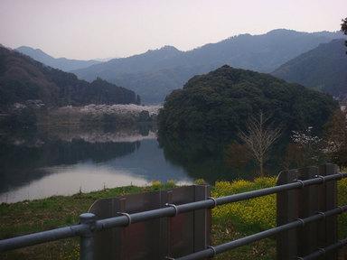 玉川ダムの春景色.JPG